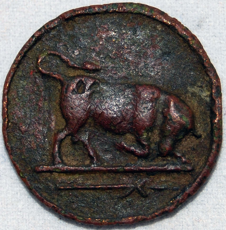An ancient Greek metal detecting find - Thurium bull ancient greek coin